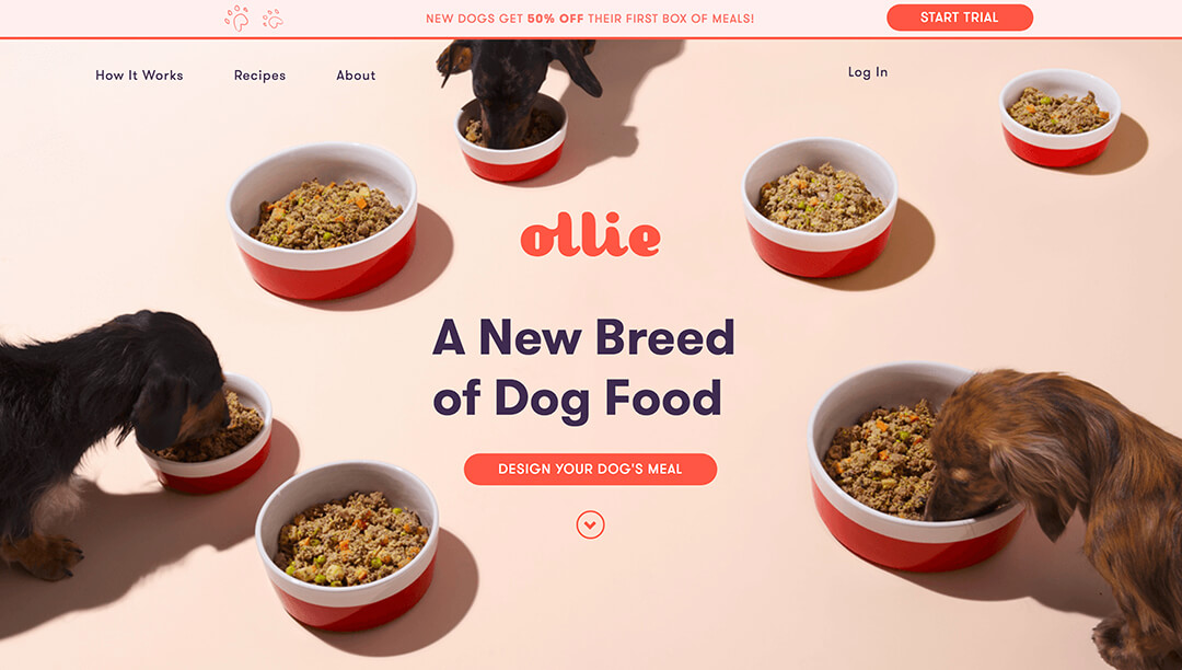 Ollie - Tailored, Fresh Dog Food