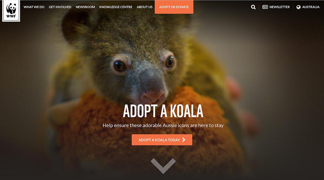 World Wildlife Foundation